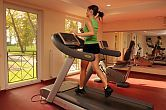 Fitness room of Hotel Azur in Siofok