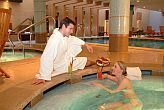 Halvpension wellness paket i Sopron i 4* Fagus Hotel