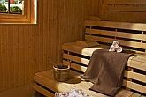 Sauna - Health Spa Resort Heviz - thermal hotel in Heviz