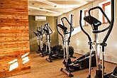 Fitness room in Hotel Bassiana in Sarvar - discount hotel in Sarvar