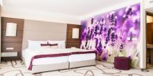 Fragrance lavender room in Hotel Ambient Aroma Spa