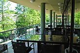 Wellness Hotel Gyula**** terrace of restaurant and cafe