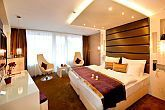 Double room with half board in Hotel Residence Siofok