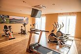 Jufa Vulkan Hotel**** fitness room use in half-board package