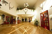 Hotel in Kecskemet close to the Mercedes-Benz factory - Juniperus Park Hotel
