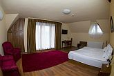 Vinum Hotel Kiskőrös - packages with half board and wellness
