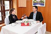 Hotel in Erd - restaurant - Hungary thermal hotel Erd