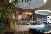 Thermal pool in Szeged - Hunguest Hotel Forras